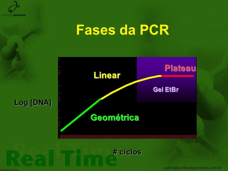 Fases da PCR Plateau Linear Gel EtBr Log [DNA] Geométrica # ciclos